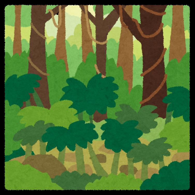 mori_jungle