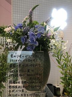 IMG_0417