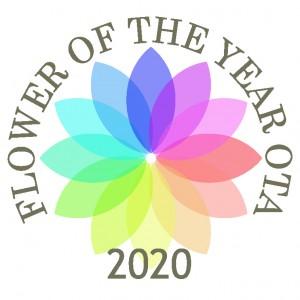 フラオタロゴ(2020)100818