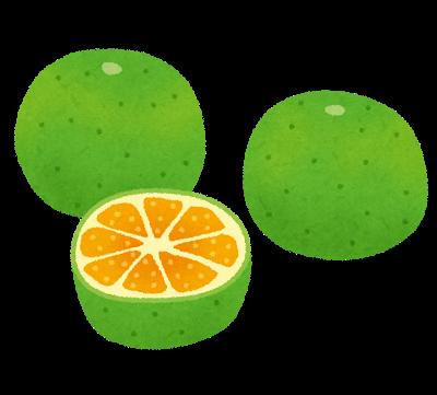 fruit_ao_mikan