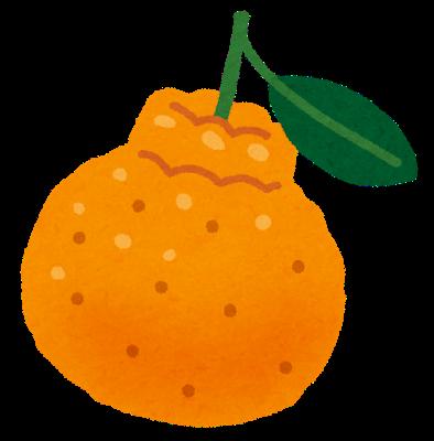 fruit_dekopon