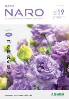 naro_no19_cover